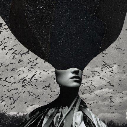 øjeRum Stilhedens Strømmen I Fuglenes Blod